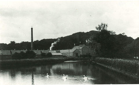 The Mill Lade at Invercarron