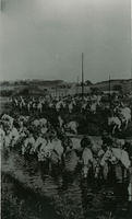 Soldiers on horseback at Cowie Mill
