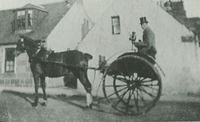 A coachman with a horse & carriage